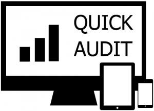 QuickAudit-300x217