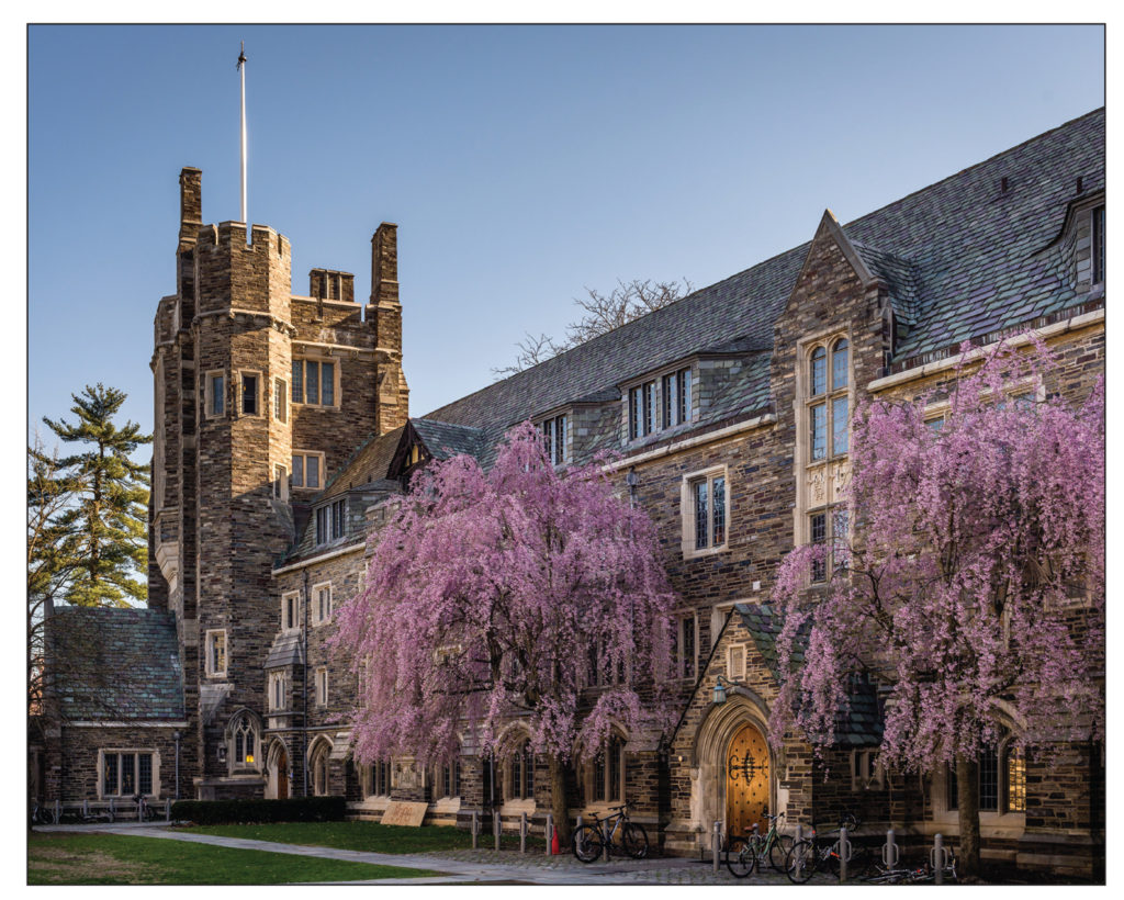 Princeton's Path to Reducing Its Carbon Footprint - IoT Intelligent Building Controls LEDSENSE